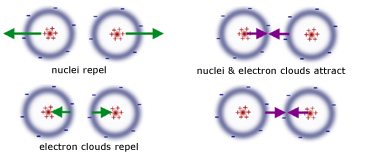 electrostatic force between two molecules