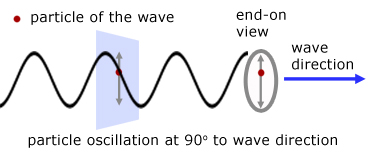 diagram of a transverse wave